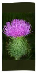 Scottish Thistle  Beach Towel