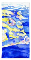 Scrawled Cowfish Portrait Beach Towel