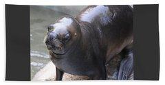 Sea Lion Beach Towel by Venetia Featherstone-Witty