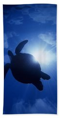 Sea Turtle Beach Sheet