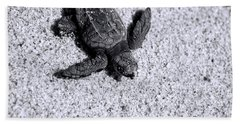 Sea Turtle In Black And White Beach Towel by Sebastian Musial