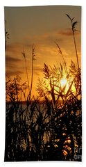 Seagrass Beach Sheet