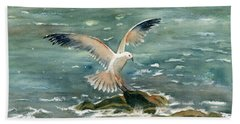 Seagull Beach Sheet by Melly Terpening