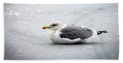 Beach Towel featuring the photograph Seagull On Ice by Aaron Berg