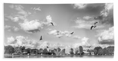 Beach Towel featuring the photograph Seagulls by Howard Salmon