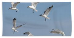 Seagulls See A Cracker Beach Towel