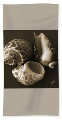Seashells Spectacular No 1 Beach Towel