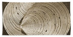 Beach Towel featuring the photograph Seashells Spectacular No 11 by Ben and Raisa Gertsberg