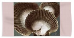 Seashells Spectacular No 22 Beach Towel