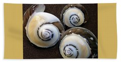 Seashells Spectacular No 23 Beach Towel