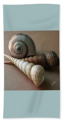 Seashells Spectacular No 29  Beach Towel