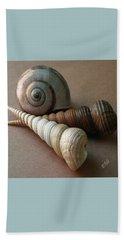 Seashells Spectacular No 29  Beach Sheet