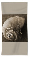 Beach Towel featuring the photograph Seashells Spectacular No 31 by Ben and Raisa Gertsberg