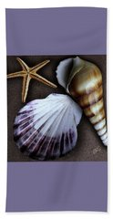 Seashells Spectacular No 37 Beach Sheet by Ben and Raisa Gertsberg