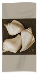 Seashells Spectacular No 4 Beach Towel