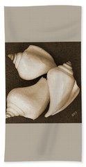 Seashells Spectacular No 4 Beach Sheet