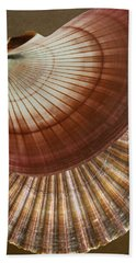 Beach Towel featuring the photograph Seashells Spectacular No 53 by Ben and Raisa Gertsberg