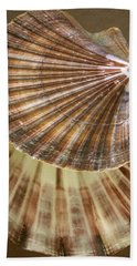 Beach Towel featuring the photograph Seashells Spectacular No 54 by Ben and Raisa Gertsberg