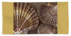 Seashells Spectacular No 7 Beach Towel