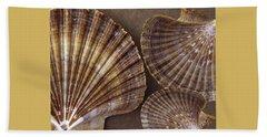 Seashells Spectacular No 7 Beach Sheet