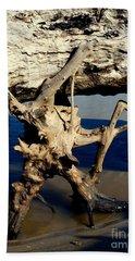 Seashore Atlas Beach Towel by Irma BACKELANT GALLERIES