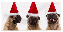 Seasons Greetings Christmas Caroling Pug Dogs Wearing Santa Claus Hats Beach Towel