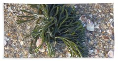 Beach Sheet featuring the photograph Seaweed by Robert Nickologianis