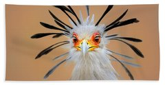 Secretary Bird Portrait Close-up Head Shot Beach Towel