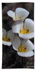 Sego Lily Beach Towel