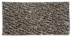 Semipalmated Sandpipers Sleeping Beach Towel