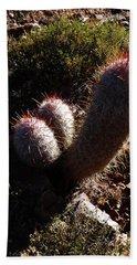 Senor Cacti Beach Towel