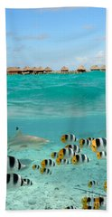 Over-under With Shark And Butterfly Fish At Bora Bora Beach Towel by IPics Photography