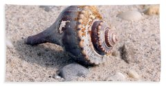 Beach Sheet featuring the photograph Shell by Karen Silvestri