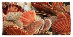 Shells On The Shore Beach Towel