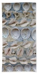 Shells Beach Sheet
