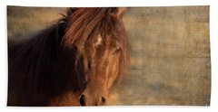 Shetland Pony At Sunset Beach Towel