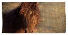 Shetland Pony At Sunset Beach Sheet
