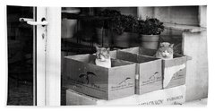 Beach Sheet featuring the photograph Shop Window Cats by Laura Melis