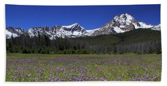 Showy Penstemon Wildflowers Sawtooth Mountains Beach Towel