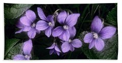 Shy Violets Beach Towel by Louise Kumpf