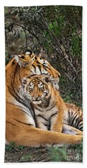 Beach Towel featuring the photograph Siberian Tiger Mother And Cub Endangered Species Wildlife Rescue by Dave Welling