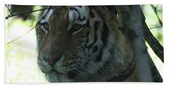Siberian Tiger Profile Beach Sheet by John Telfer