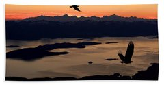 Silhouette Of Bald Eagles In Flight At Beach Towel