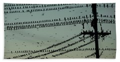 Silhouette Of Birds Gathering On Wires Beach Towel