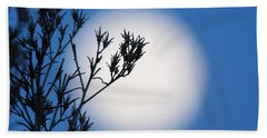 Beach Sheet featuring the photograph Silver Sage by Jim Garrison