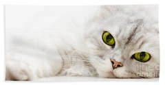 Beach Sheet featuring the photograph Silver Shaded Persian by Carsten Reisinger