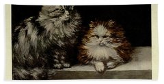 Silver Tabby And Orange And White Persians Beach Towel