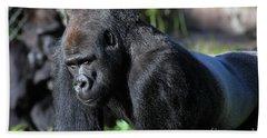 Silverback Gorilla 5d27057 Beach Towel