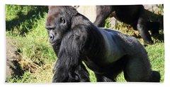 Silverback Gorilla 7d27234 Beach Towel