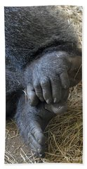 Beach Sheet featuring the photograph Silverback Toes by Robert Meanor